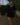 robe-noire-elba-ange_2